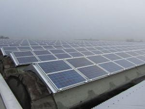 manutenzione tetti industriali